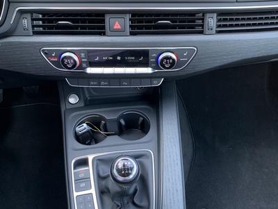 Audi_A4_Argus_4.jpg