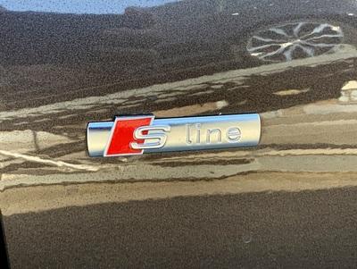 Audi_A4_Argus_3.jpg